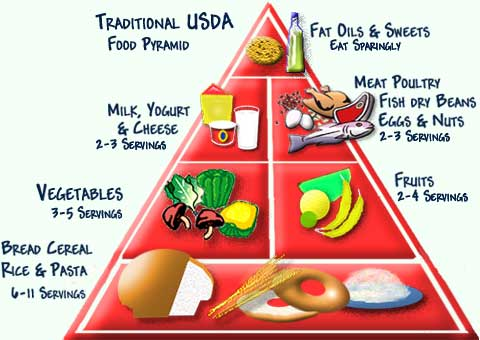 USDA Food Pyramid, traditional, lots of carbs